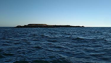 Baie de Seine occidentale. Crédit photo : Camille Delage / OFB