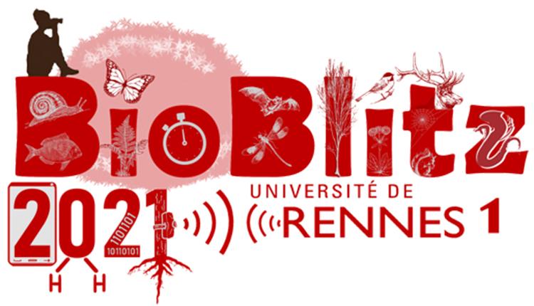 Bioblitz 2021, Campus de Beaulieu, Rennes © Université de Rennes