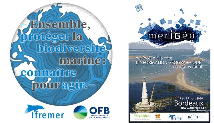 JEnsemble, protéger la biodiversité marine ! Connaître pour agir et Merigeo 2020