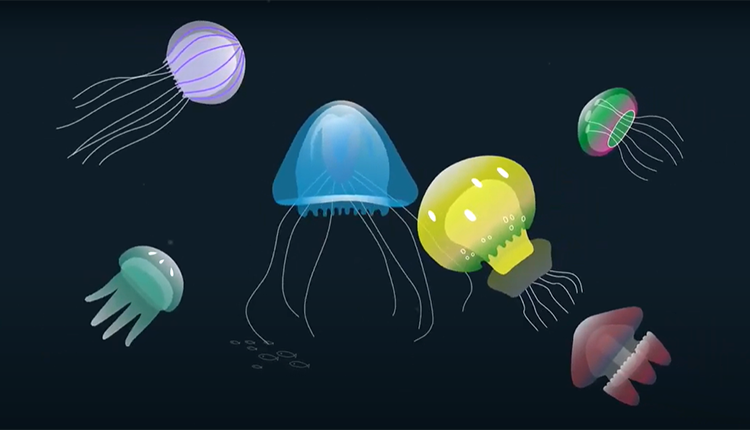 Présentation des méduses © LISAA