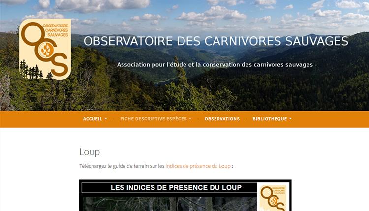 Observatoire des carnivores sauvages © OCS
