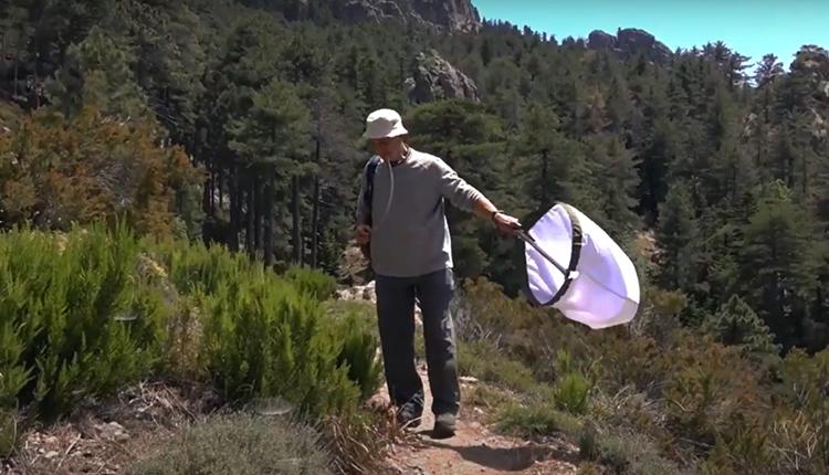La Planète Revisitée : Corse (volet terrestre) © DR