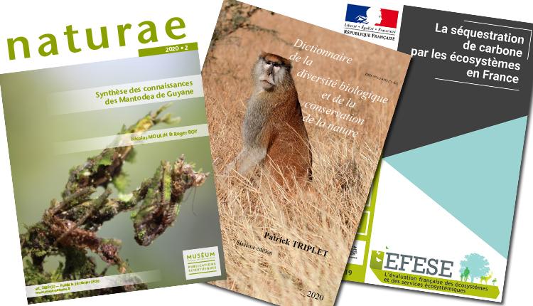 Publications Janvier 2020