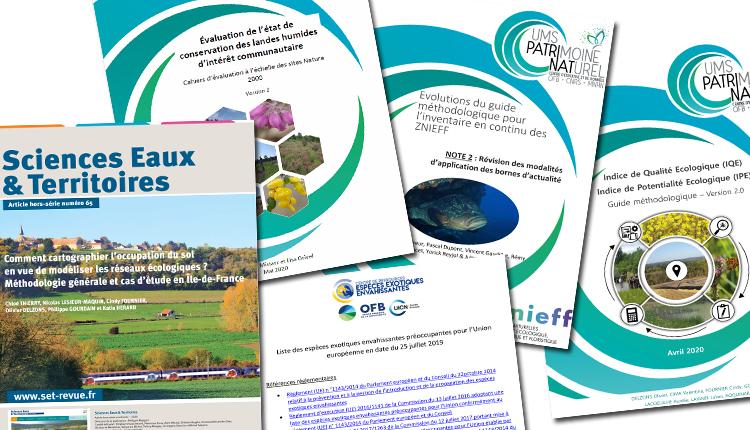 Publications Juin 2020