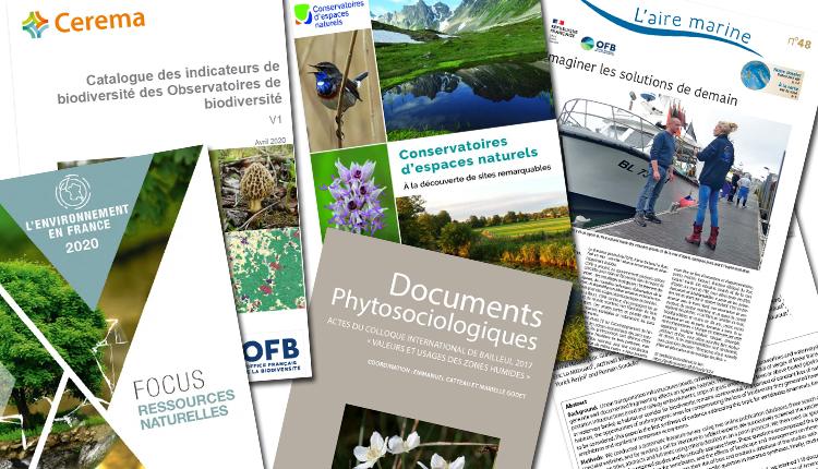 Publications Juillet 2020