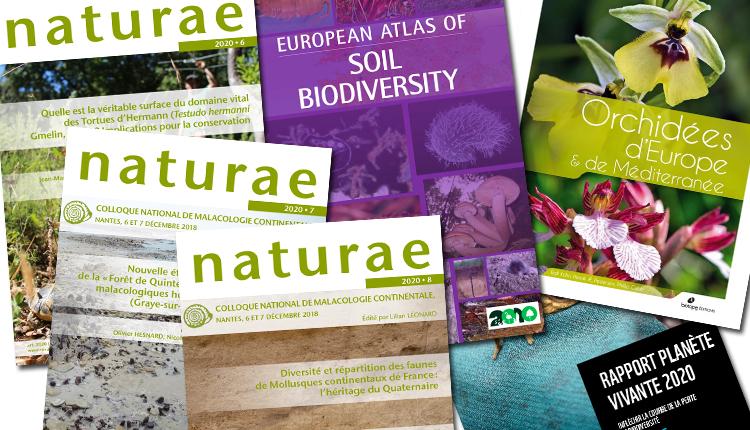 Publications septembre 2020