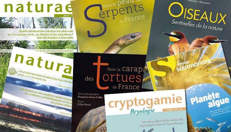 Publications octobre 2020
