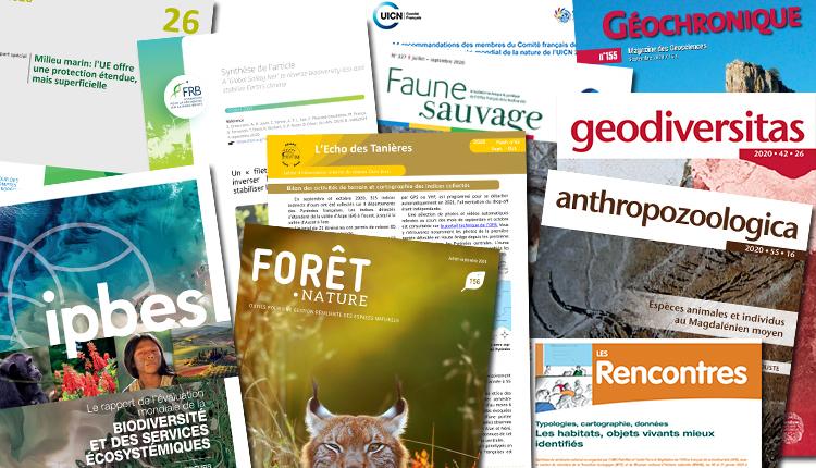 Publications novembre 2020