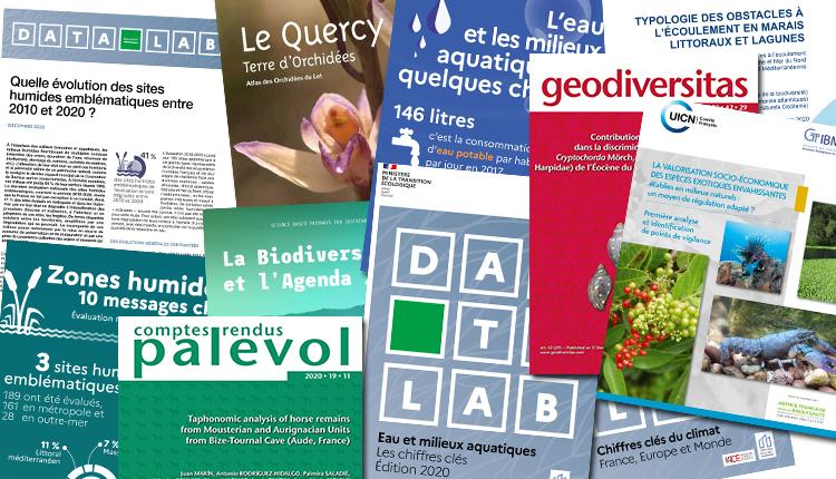 Publications décembre 2020