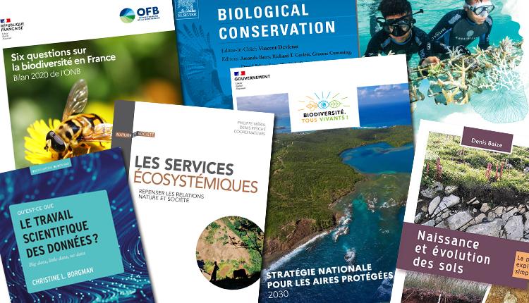Publications janvier 2021