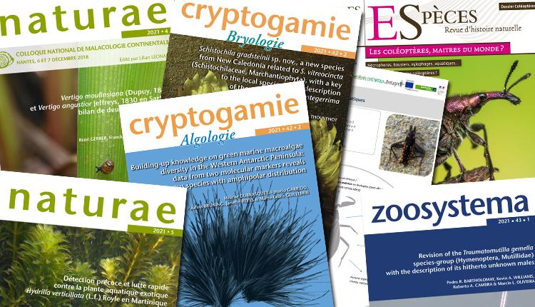 Publications février 2021