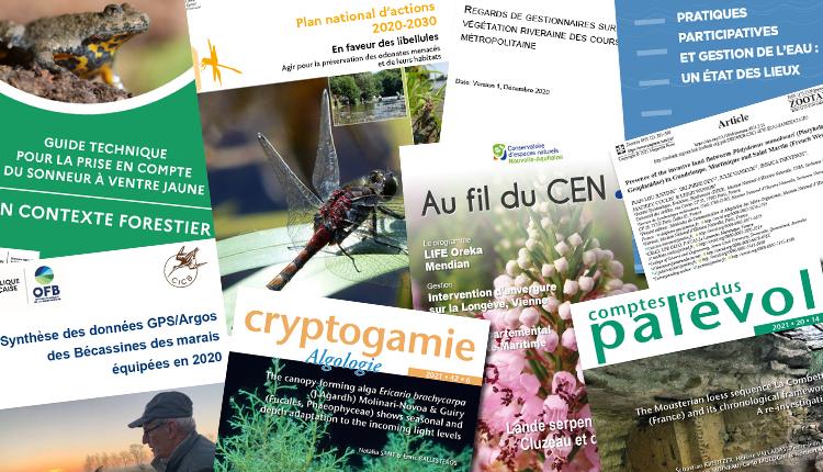 Publications avril 2021