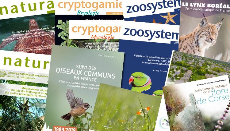 Publications mai 2021
