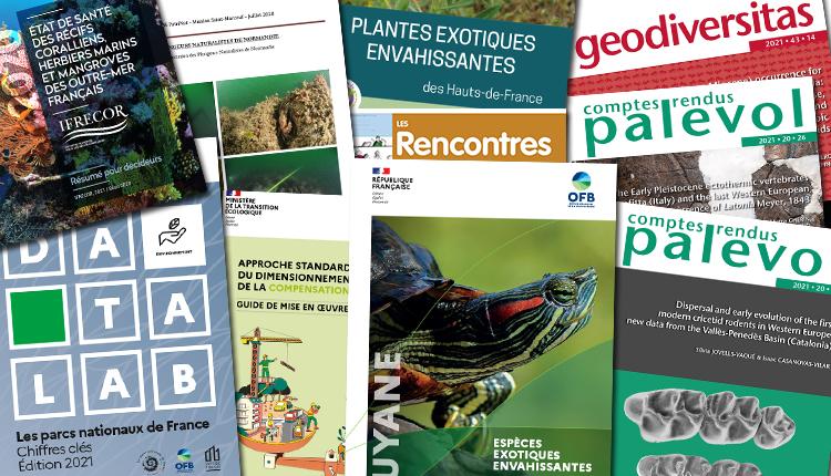 Publications Juin 2021