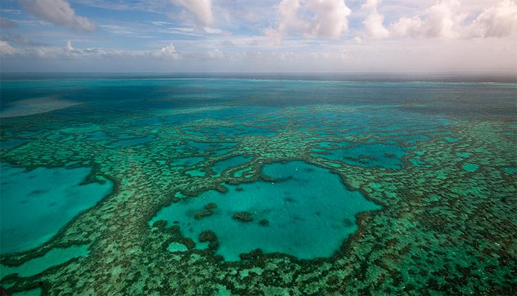 Récifs coralliens © ICRI Forum DR