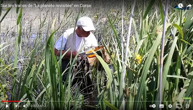 Sur les traces de La planète revisitée en Corse. Comment sont élaborés les grands inventaires naturalistes ? À quoi servent les données ? © OFB