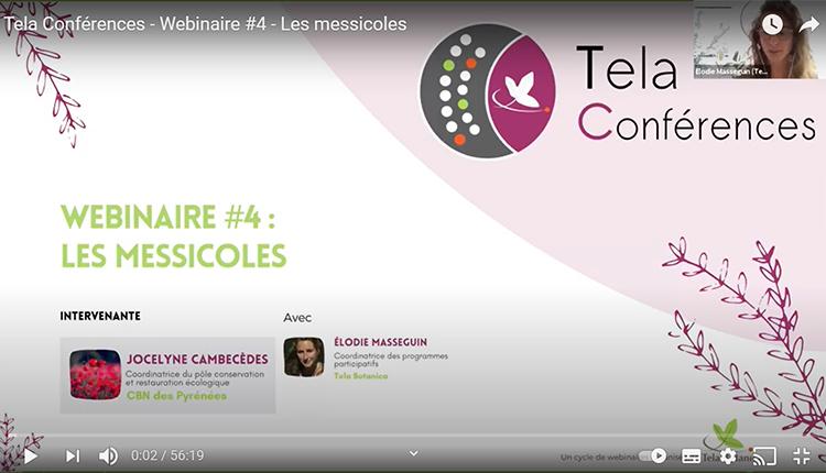 Tela conférences Les messicoles © TelaBotanica