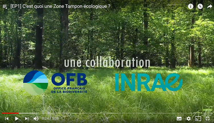 Chaîne Webinaires/Formations en ligne © OFB